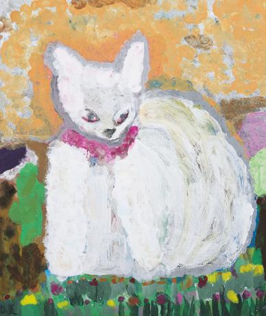 パンドラ(白猫)